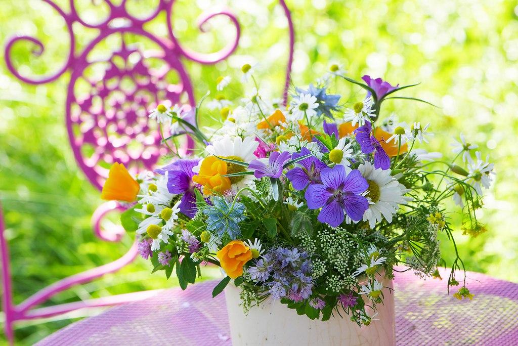 Farbenfroher Wildblumenstrauß (_DSC6082)