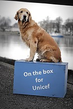 www.on-the-box.fotograf.de - On the Box for UNICEF - Konstanz - Jespah Holthof (2)