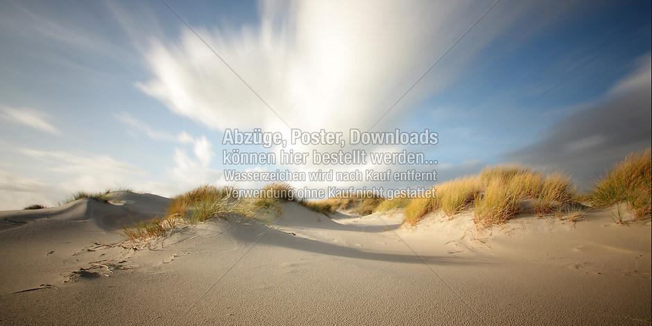 DÜNEN 8862 | föhr, amrum, wyk, nieblum, natur dünen, strand, fotografie, foto, bild, jens oschmann, fotograf