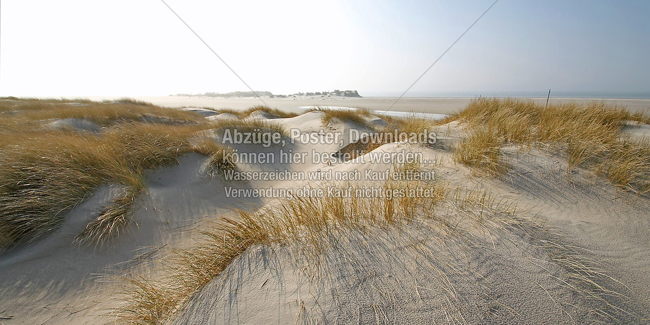 DÜNEN 9505 | föhr, amrum, wyk, nieblum, natur dünen, strand, fotografie, foto, bild, jens oschmann, fotograf