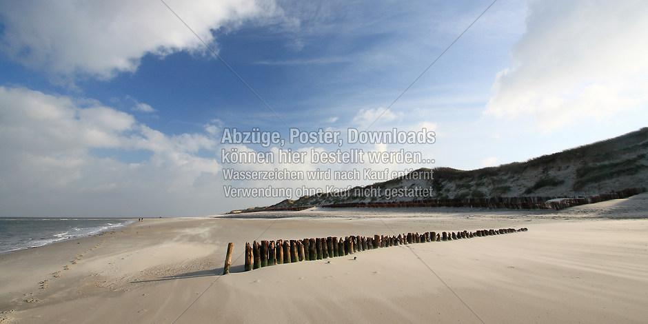 AMRUM 1251 | föhr, amrum, wyk, nieblum, natur dünen, strand, fotografie, foto, bild, jens oschmann, fotograf