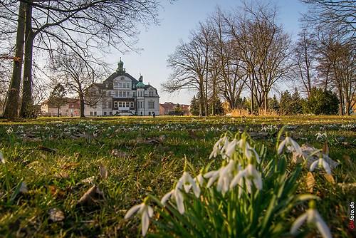 Frühling 2014_001_Schlosspark Uebigau mit Schloss