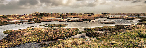 Blick auf Wasser im Nationalpark Norderney