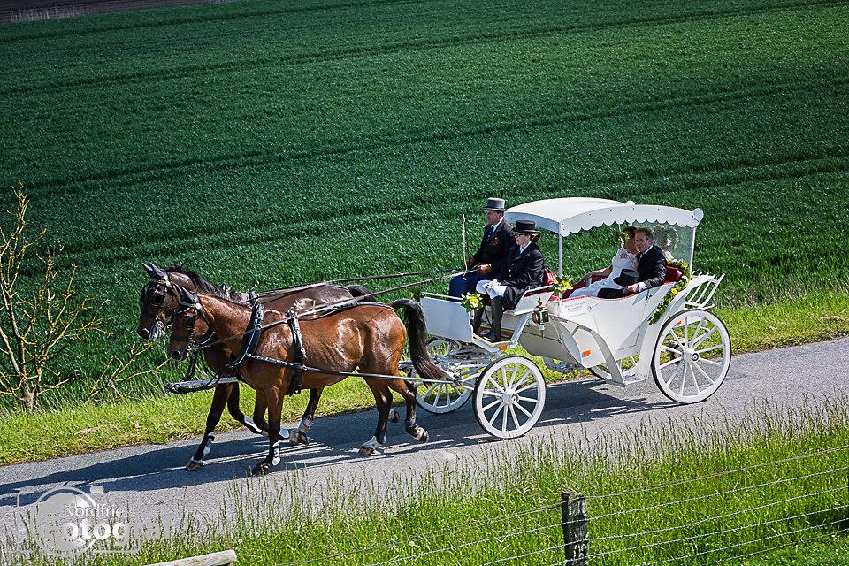 FB-Hochzeit Oldenburg-3