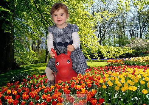 3263 frühlingsblumen-15