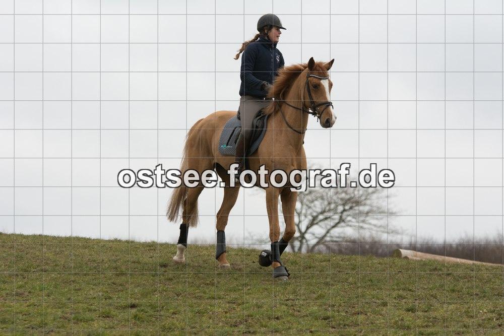 Reesdorf_ (2 von 84)