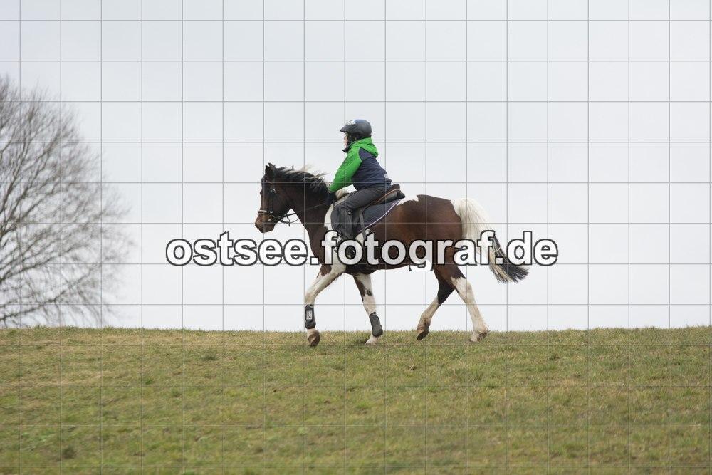 Reesdorf_ (3 von 84)