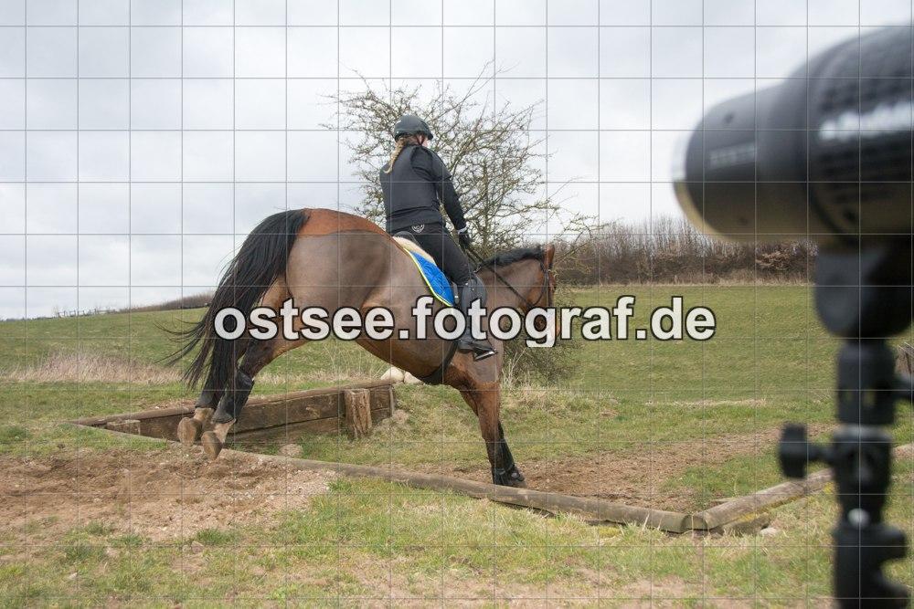Reesdorf_ (16 von 84)