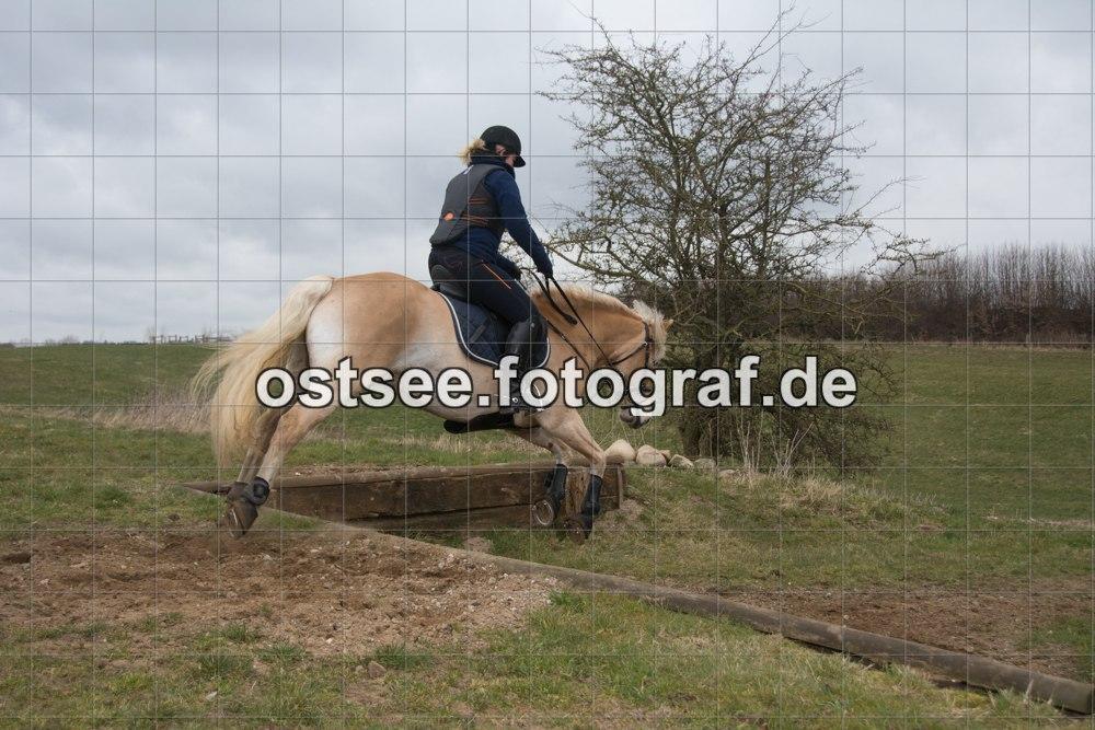 Reesdorf_ (17 von 84)