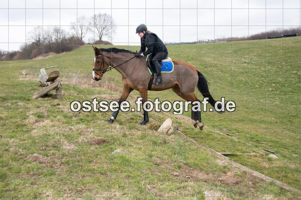 Reesdorf_ (18 von 84)