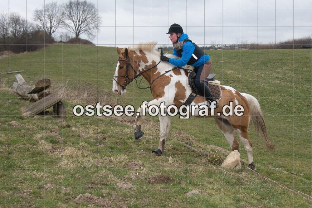 Reesdorf_ (22 von 84)