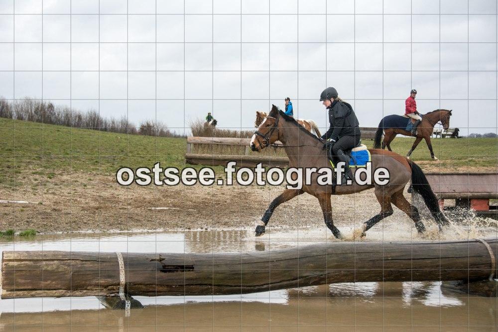 Reesdorf_ (35 von 84)
