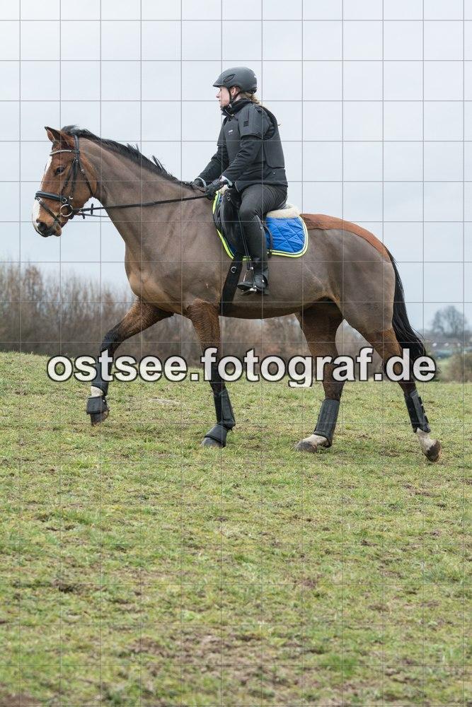 Reesdorf_ (51 von 84)