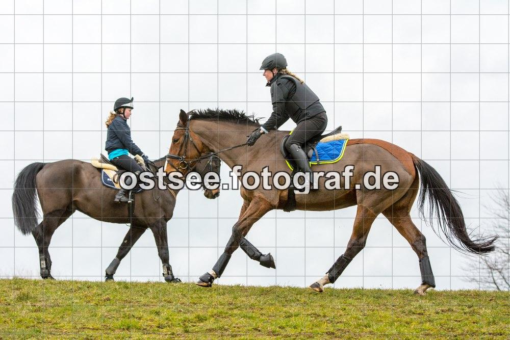 Reesdorf_ (57 von 84)