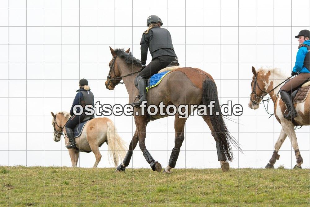 Reesdorf_ (60 von 84)