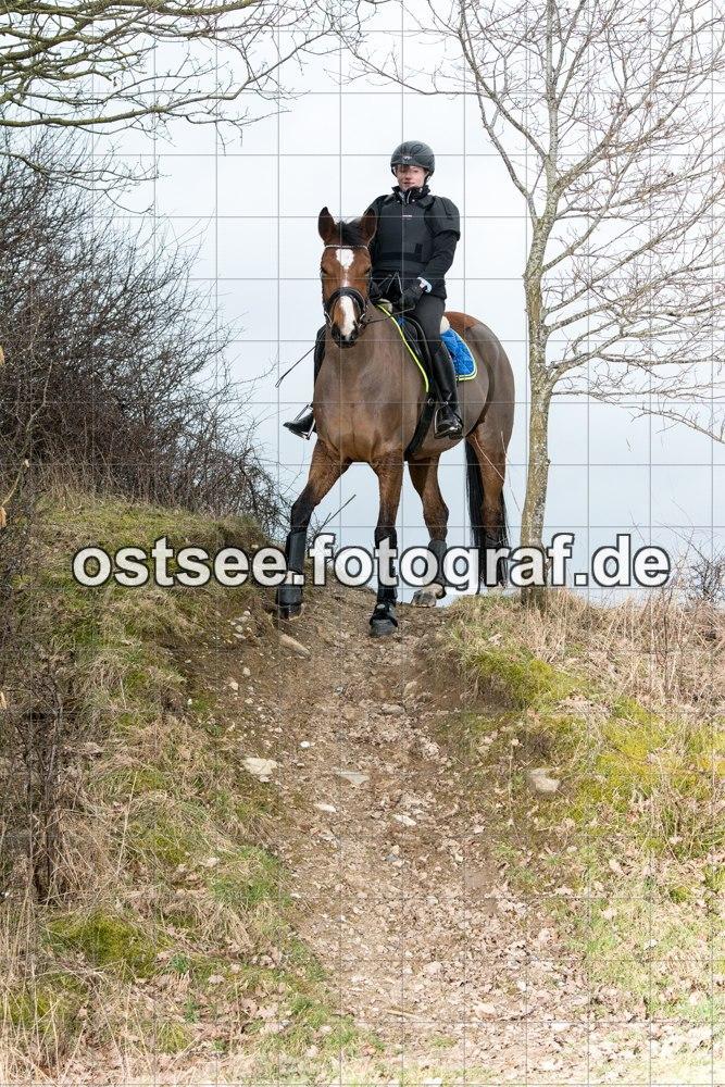 Reesdorf_ (73 von 84)