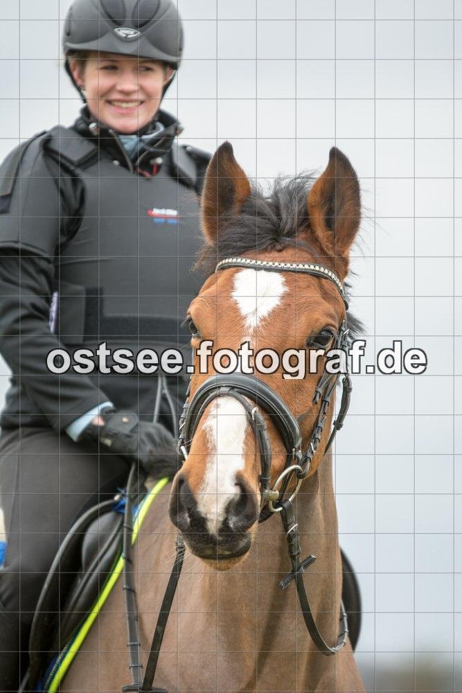 Reesdorf_ (83 von 84)