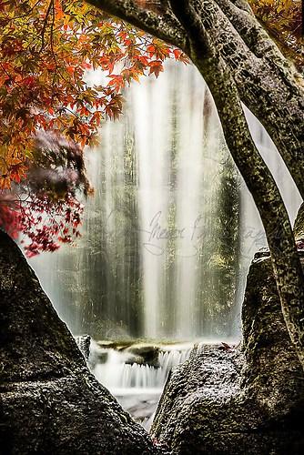 Heide Park - Wasserfall