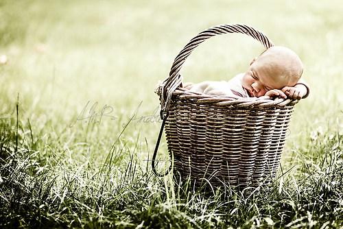 Baby im Körbchen 1