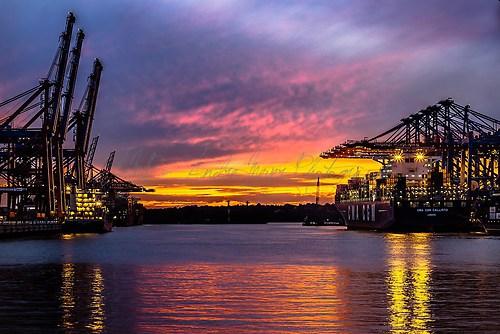 Hamburg - Burchardkai - Sonnenuntergang