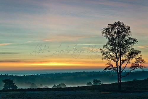 Brunsberg - Morgendämmerung