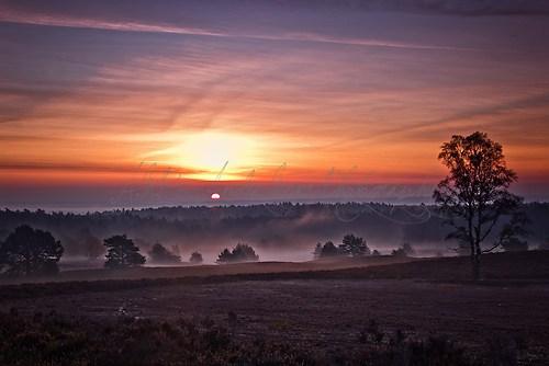 Brunsberg - Sonnenaufgang im Nebel