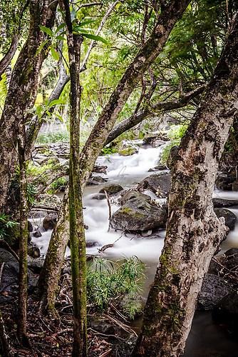 Kauai - alles im Fluss