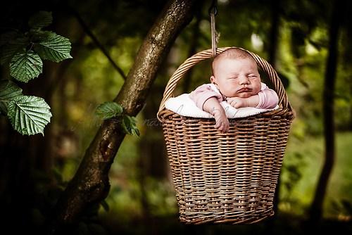 Baby im Körbchen 2