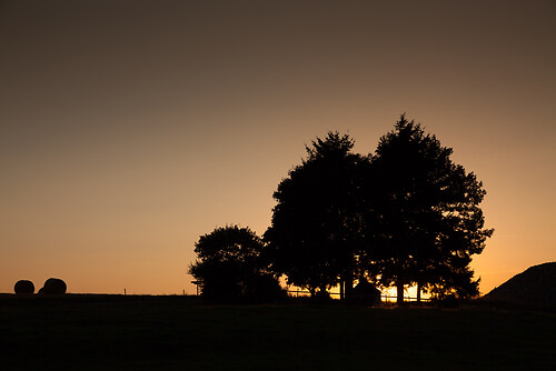 2013_09_03__19Uhr51__Scholer_2252