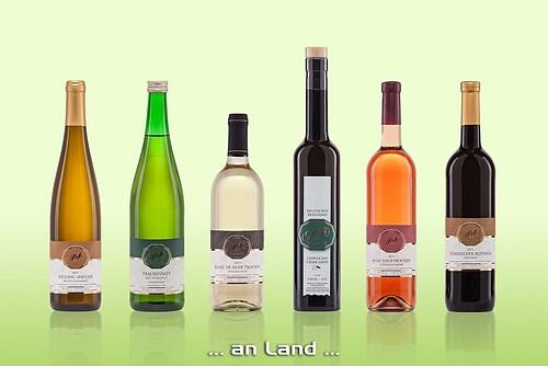 tonimedia-Fotografie-Weinflaschen