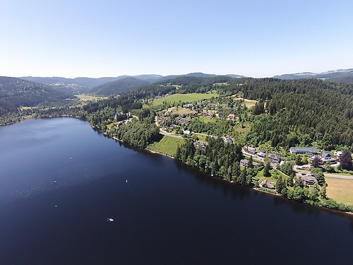 Schwarzwald See Titisee (20150710-DJI01483)