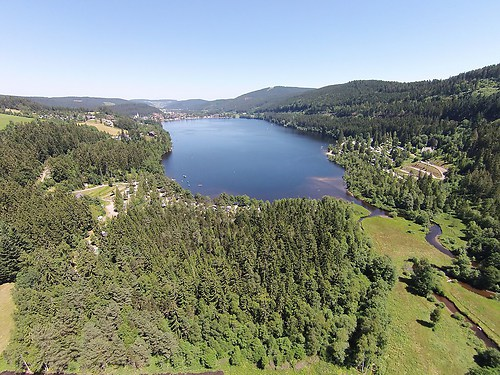 Schwarzwald See Titisee (20150710-DJI01486)
