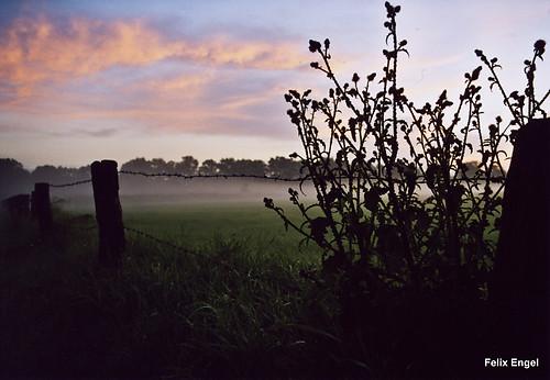 Sonnenaufgang (diefotofabrik.de_0001)