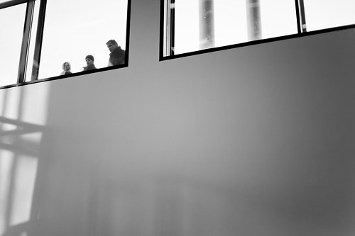 Through the Window-1002096