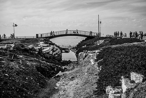 Bridge-1005246