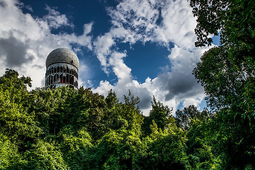 NSA im Wald-1007539