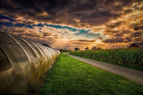 rural lines-2