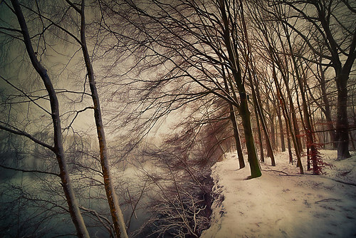 Schnee am Ufer (1 von 1)