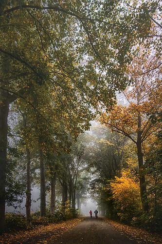 Rad fahren im Herbst