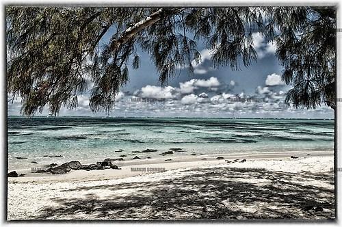 Mauritius 19