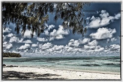 Mauritius 20