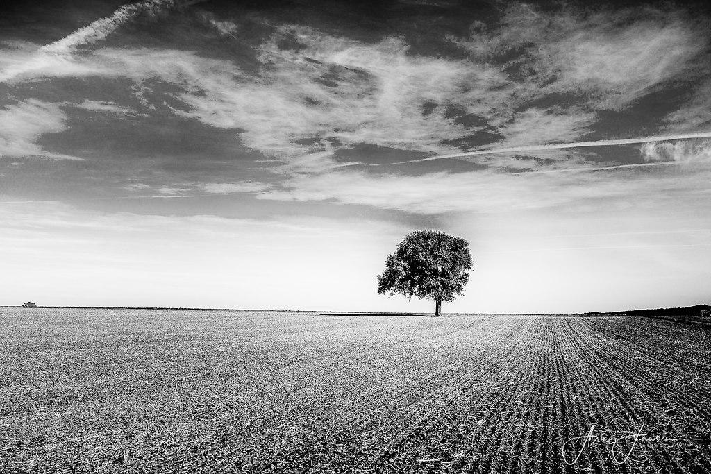 bilderleben-1 | arne.jansen.photography