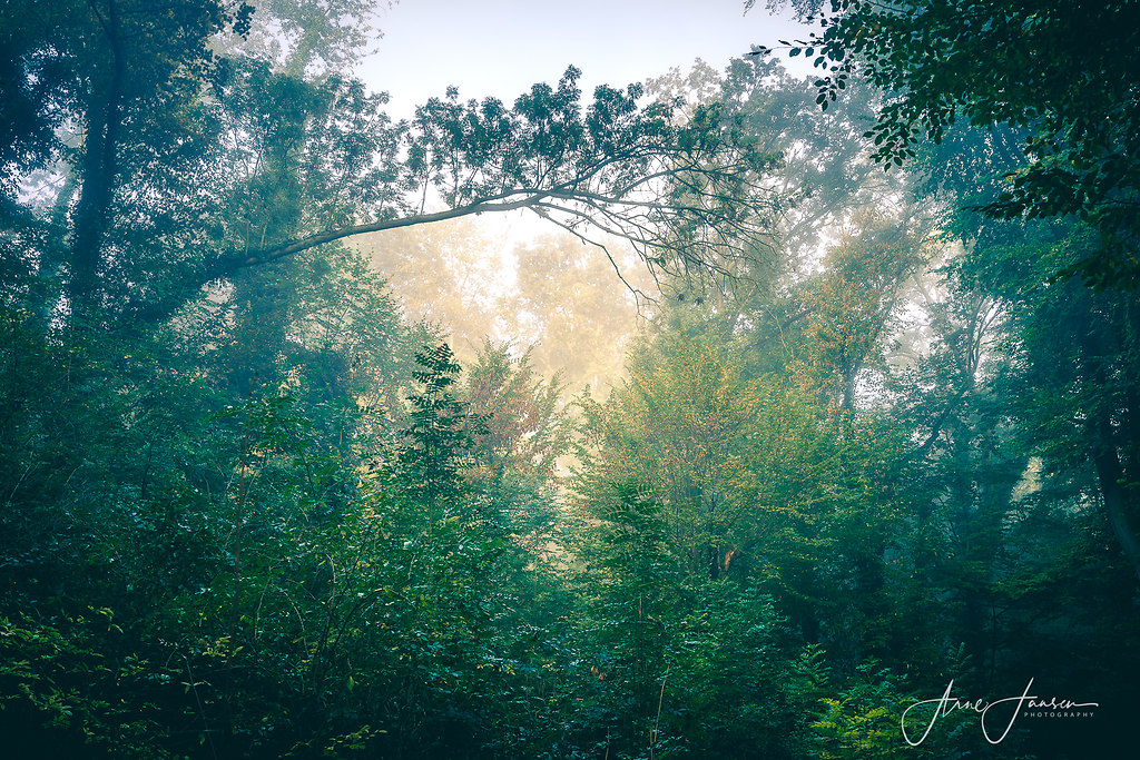 bilderleben-7 | arne.jansen.photography