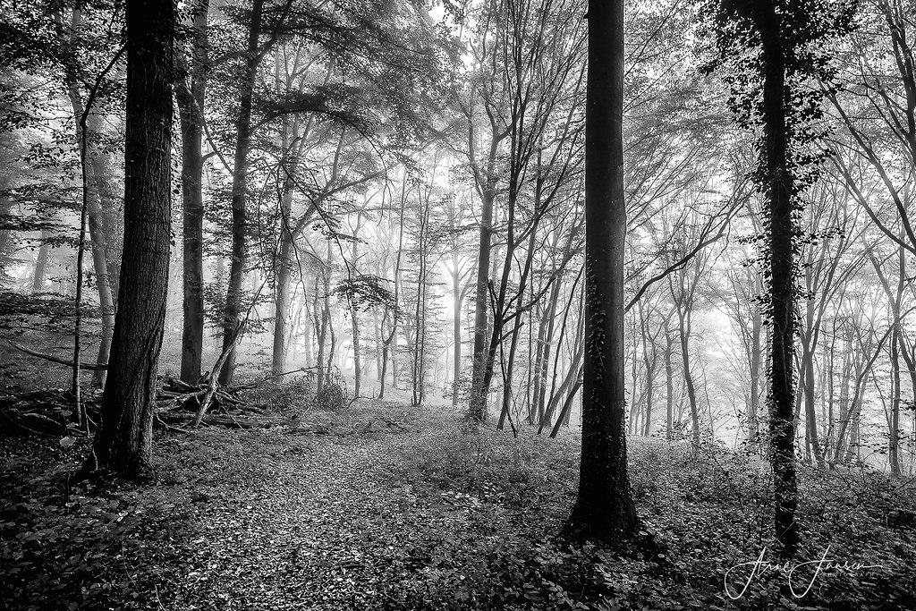 bilderleben-8 | arne.jansen.photography