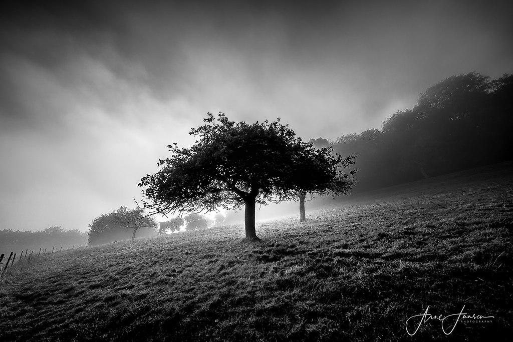 bilderleben-10 | arne.jansen.photography