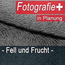 Fotografie + Fell und Frucht