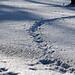Starnberger See Winter (B101216_starnbergerseeIMG_2161) - 16.12.2011 - der gefrorene Starnberger See im Winter // Frozen lake Starnberger in bavaria in winter