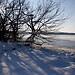 Starnberger See Winter (B101216_starnbergerseeIMG_2339) - 16.12.2011 - der gefrorene Starnberger See im Winter // Frozen lake Starnberger in bavaria in winter