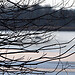 Starnberger See Winter (B101216_starnbergerseeIMG_2454) - 16.12.2011 - der gefrorene Starnberger See im Winter // Frozen lake Starnberger in bavaria in winter