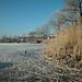 Wesslinger See Oberbayern im Winter (20090110_bmw42_DSCN0059) - Wesslingersee, Weßling, Ufer, Winter, Schilf, Natur, 10.01.2009, Winter, Blick auf Häuser des Ortes